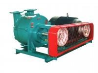 ZGZB型水环式真空泵